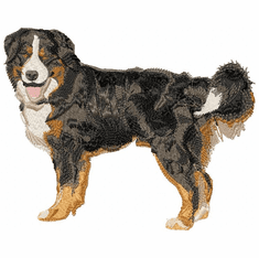 bmd009 Bernese Mountain Dog (small or large design)