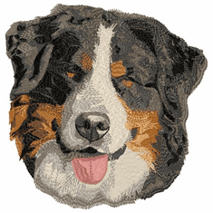 bmd010 Bernese Mountain Dog (small or large design)