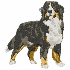 bmd011 Bernese Mountain Dog (small or large design)