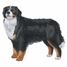 bmd016 Bernese Mountain Dog (small or large design)