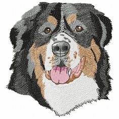 bmd019 Bernese Mountain Dog (small or large design)
