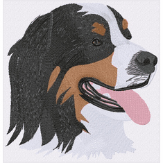 bmd029 Bernese Mountain Dog (small or large design)