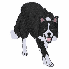 bordercollie106 Border Collie (small or large design)