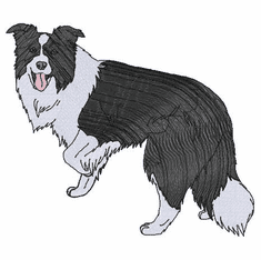 bordercollie107 Border Collie (small or large design)