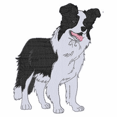 bordercollie112 Border Collie (small or large design)