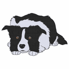 bordercollie113 Border Collie (small or large design)