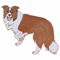 bordercollie117 Border Collie (small or large design)