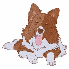 bordercollie118 Border Collie (small or large design)