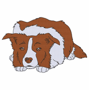 bordercollie123 Border Collie (small or large design)
