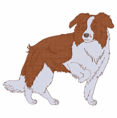 bordercollie124 Border Collie (small or large design)