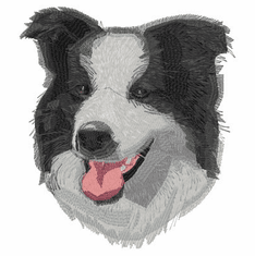 bordercollie126 Border Collie (small or large design)