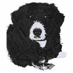 bordercollie127 Border Collie Dax (small or large design)