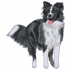 bordercollie128 Border Collie (small or large design)