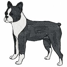 boston005 Boston Terrier (small or large design)