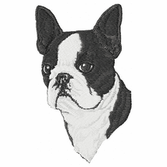 boston011 Boston Terrier (small or large design)