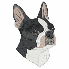 boston030 Boston Terrier (small or large design)