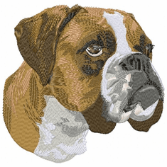 boxer001 Boxer (small or large design)
