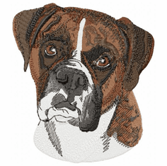 boxer004 Boxer (small or large design)