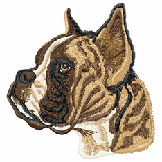 boxer005 Boxer (small or large design)