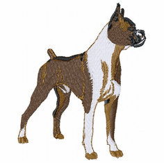 boxer006 Boxer (small or large design)