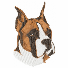 boxer009 Boxer (small or large design)