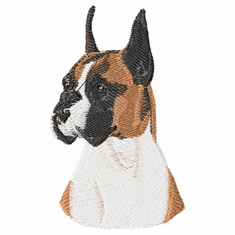 boxer010 Boxer (small or large design)