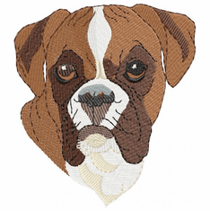 boxer012 Boxer (small or large design)