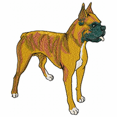 boxer024 Boxer (small or large design)