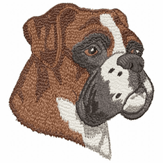 boxer026 Boxer (small or large design)