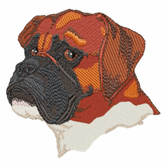 boxer031 Boxer (small or large design)
