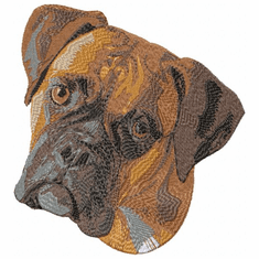 boxer044 Boxer (small or large design)