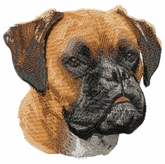 boxer047 Boxer (small or large design)