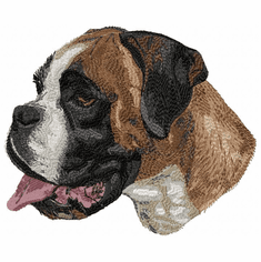 boxer050 Boxer (small or large design)