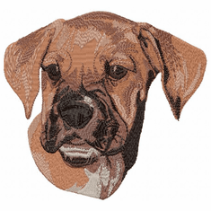 boxer051 Boxer (small or large design)