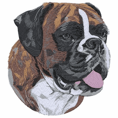 boxer060 Boxer (small or large design)