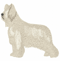 briard003 Briard   (small or large design)