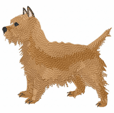 cairn002 Cairn Terrier (small or large design)