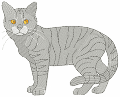 cat023 Cat (small or large design)