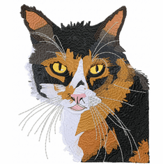 cat113 Chester (small or large design)