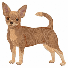 chihuahua021 Chihuahua (small or large design)