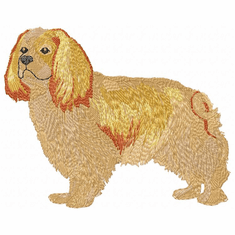 ckcs002 Cavalier King Charles Spaniel (small or large design)