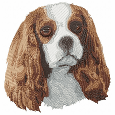 ckcs012 Cavalier King Charles Spaniel (small or large design)