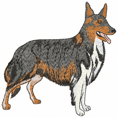 collie009 Collie (small or large design)