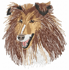 collie022 Collie (small or large design)