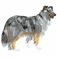 collie042 Collie (small or large design)