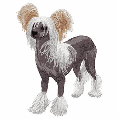 crested019 Chinese Crested Terrier (small or large design)