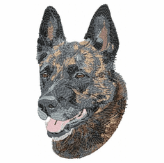 dutchshepherd001 Dutch Shepherd (small or large design)