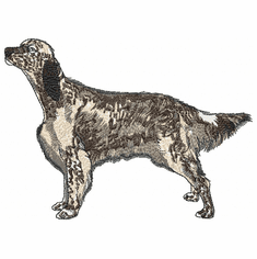 engsetter015 English Setter (small or large design)