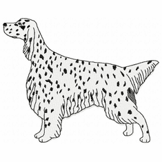engsetter018 English Setter (small or large design)