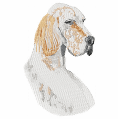 engsetter020 English Setter (small or large design)